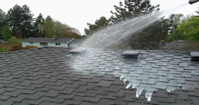 Portland Oregon S Industry Leader In Organic Roof Moss